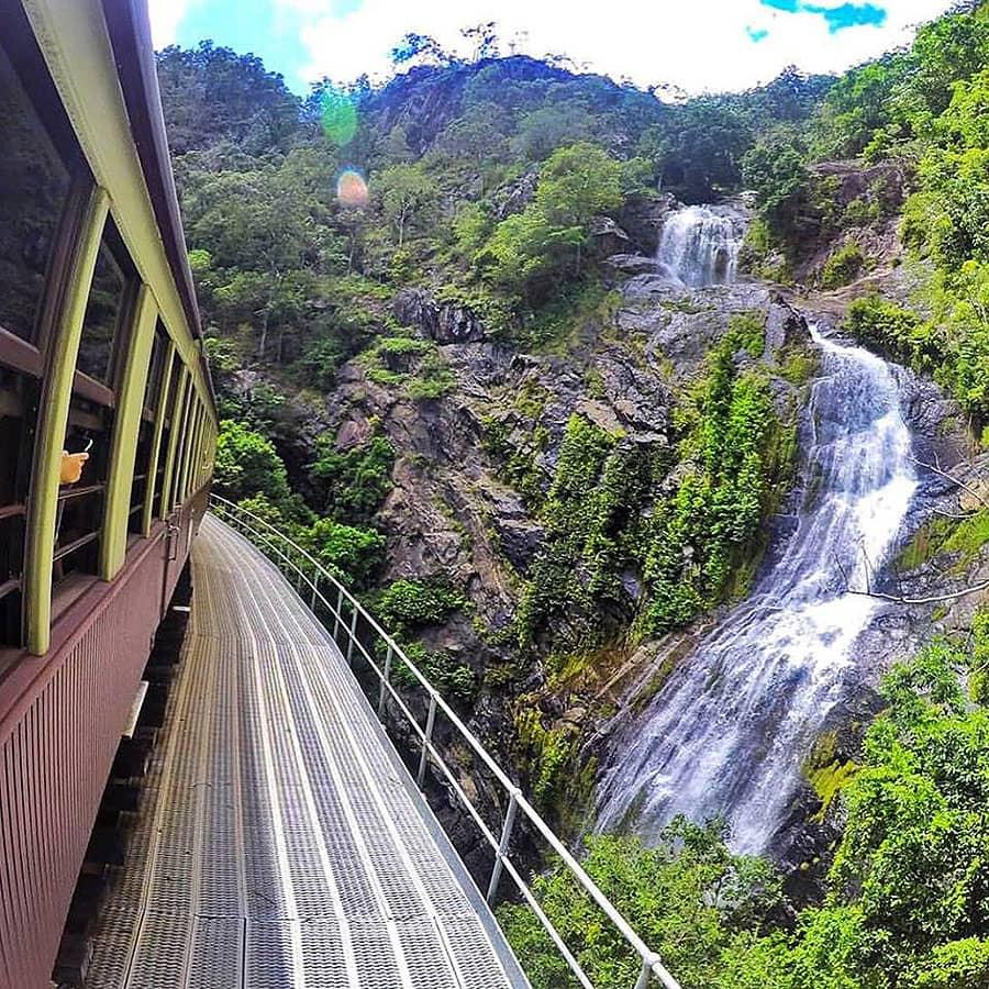 Jungle Tours and Trekking Kuranda Day Tours