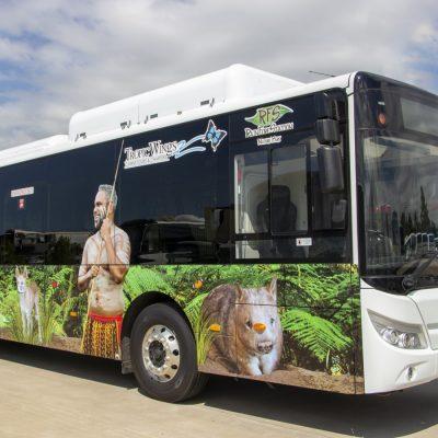 Electric Bus in Kuranda Village