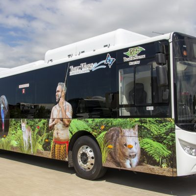 Electric Bus in Kuranda in Cairns
