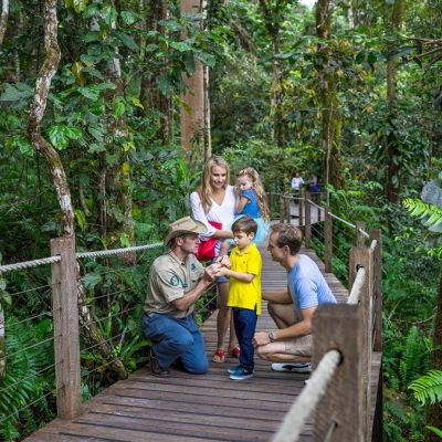 Skyrail family tours